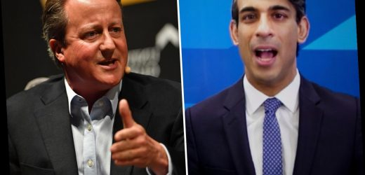 Rishi Sunak promised David Cameron he would 'push' his plan for taxpayers' cash to prop up his firm