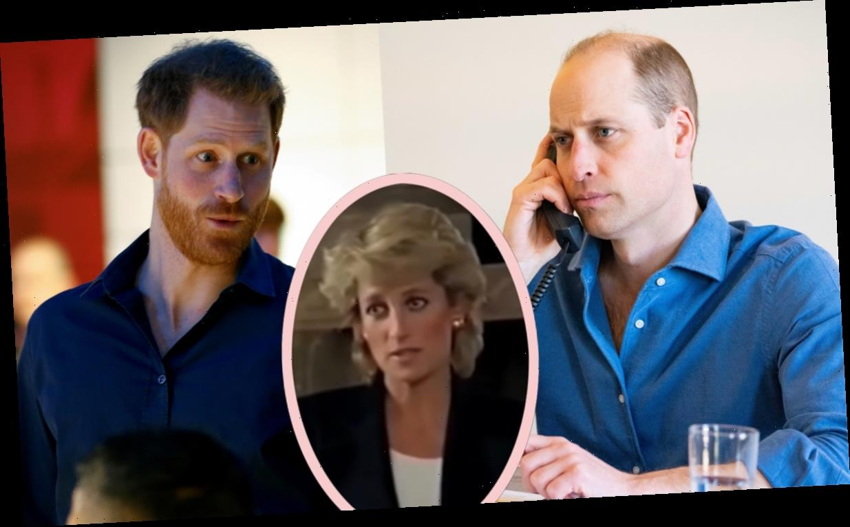 Royal Source Reveals One Thing Harry & William Have Agreed On Recently