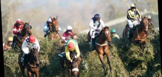 Grand National betting for beginners: Expert ratings and tips for every horse