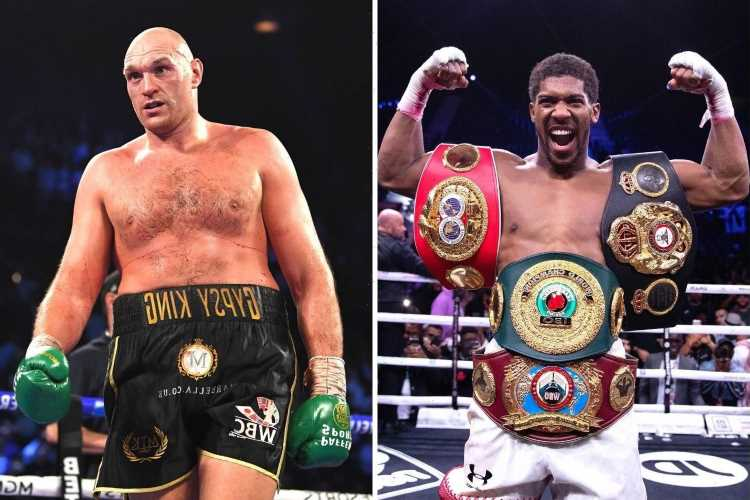 Anthony Joshua vs Tyson Fury date: When will fight take place, what is the venue and how much will each boxer earn?