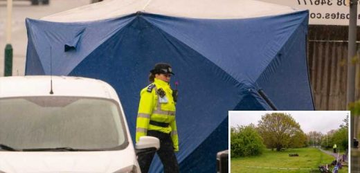 Blood-soaked teen shouted 'he died in my arms' after being chased by machete-wielding gang