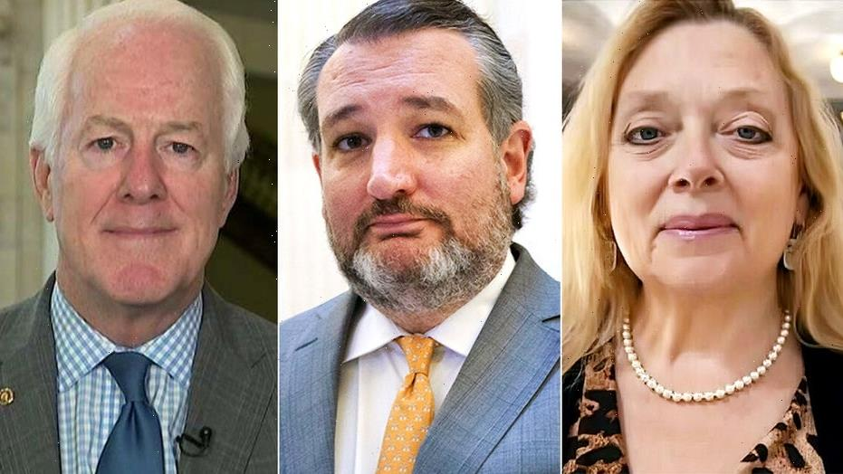 Carole Baskin blames Texas Sens. Cruz, Cornyn for escaped Houston tiger