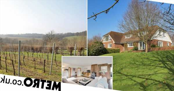 Farmhouse up for sale for £2million has its very own vineyard