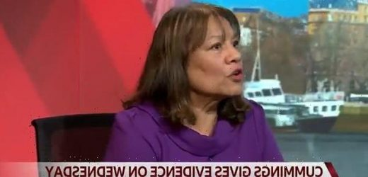 Fury as Labour MP Valerie Vaz suggests PM's Covid scare exaggerated
