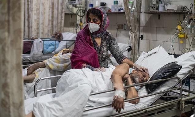 India's true Covid death toll 'could top 1m before end of the month'