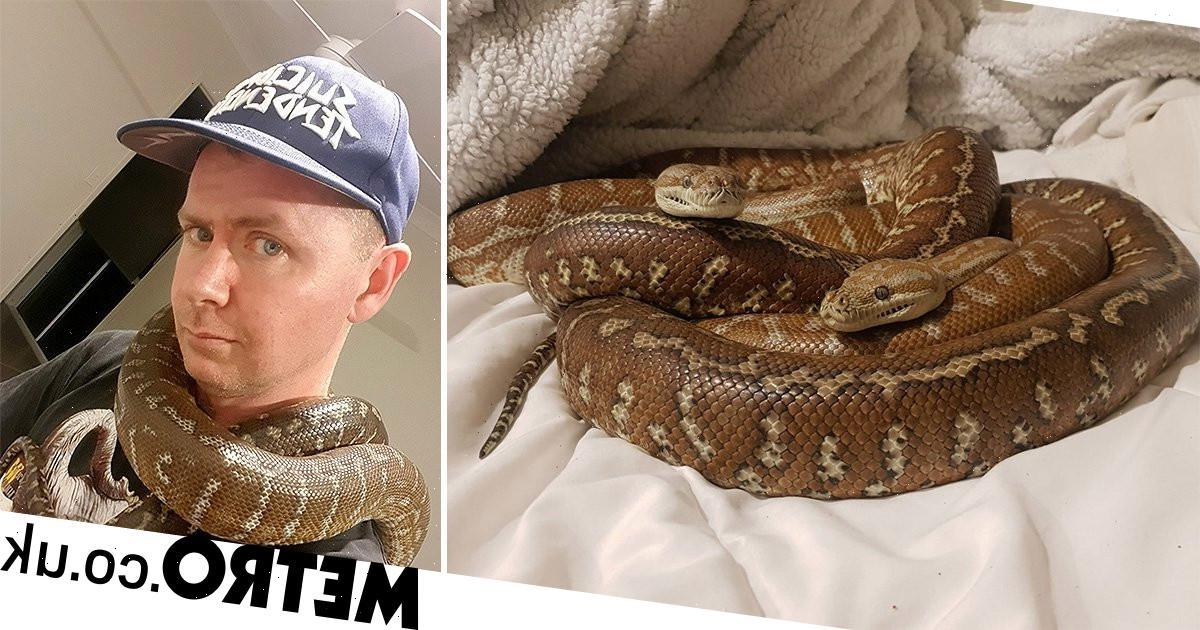 Man who sleeps with two snakes every night is looking for love