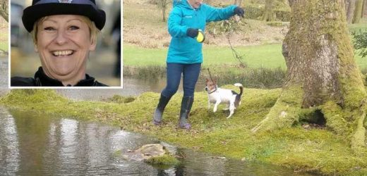 Murdered PCSO Julia James' dog tested for DNA as police hunt for breakthrough amid fears killer WILL strike again