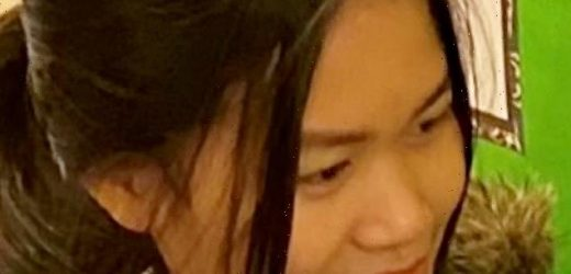 Police launch hunt for missing schoolgirl who vanished four days ago