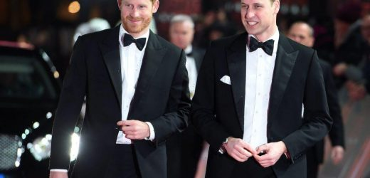 Prince Harry Seemingly Snubs Prince William In New Claims About Mental Health