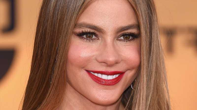 The Transformation Of Sofia Vergara From 15 To 48