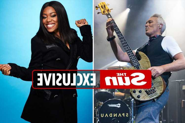 BBC bosses creating X Factor-style show featuring Martin Kemp and Lady Leshurr with Sixties and Seventies musicians