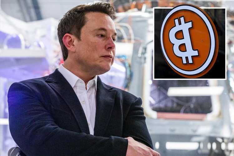 Bitcoin drops AGAIN overnight after Tesla and SpaceX boss Elon Musk's crude 'CumRocket' crypto tweet