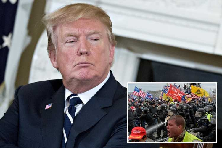 Conspiracy theory Trump 'will be reinstated in August' has Homeland Security 'highly concerned' of potential violence
