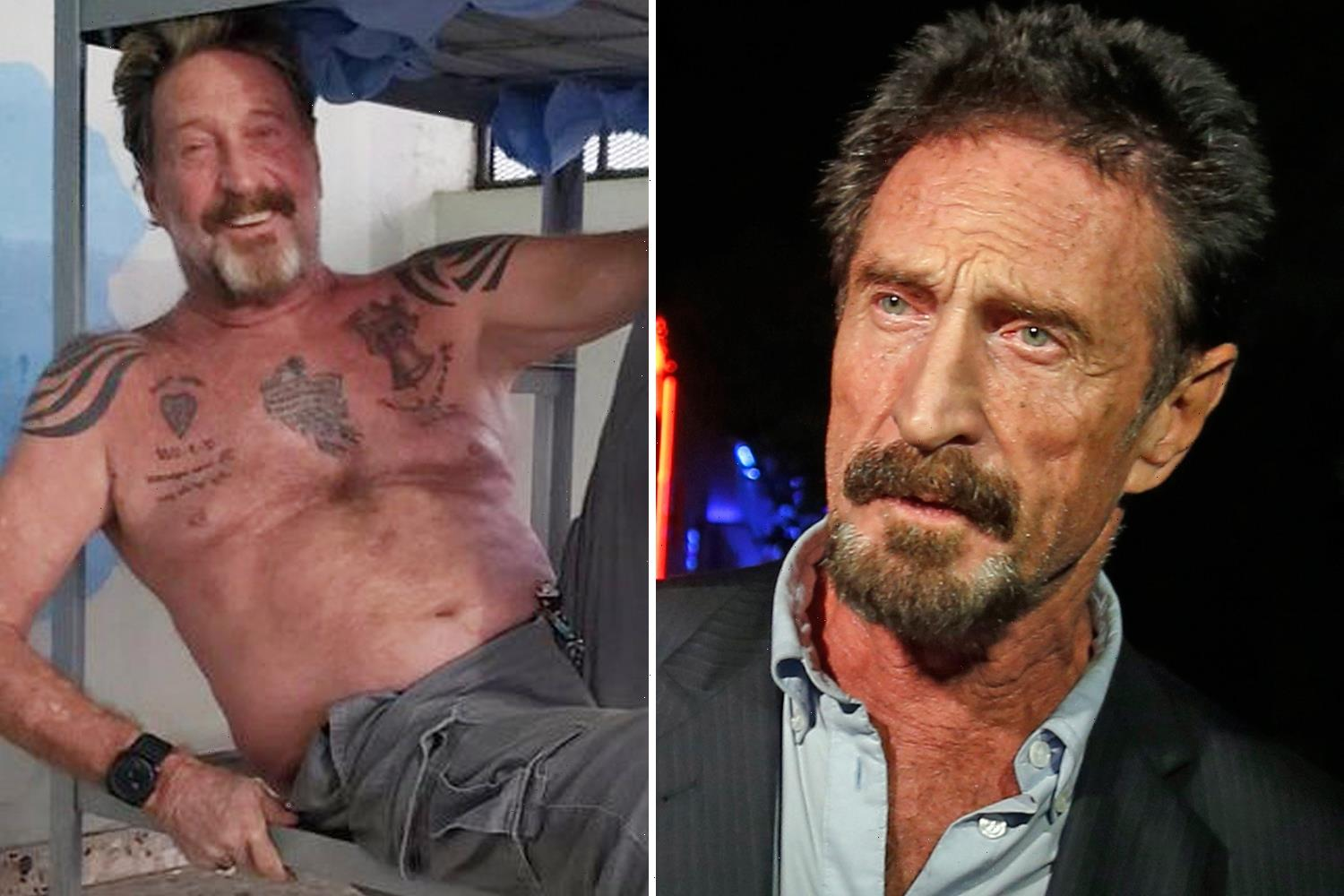 John McAfee was fascinated with 'quantum suicide' and tweeted about 'painless methods' before his jail death