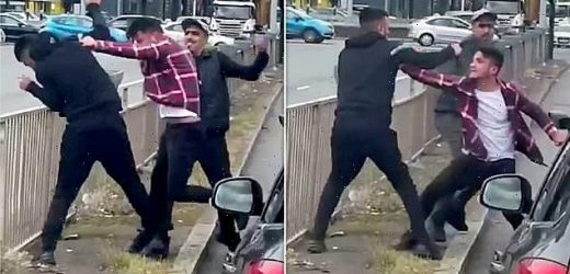 Two thugs caught on video battering motorist in road rage incident