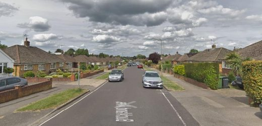 Woman in her 20s and man in his 60s found dead as suspect, 52, arrested on suspicion of murder