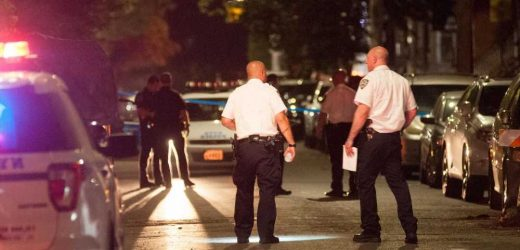 5 people wounded in 3 shootings across NYC: Cops