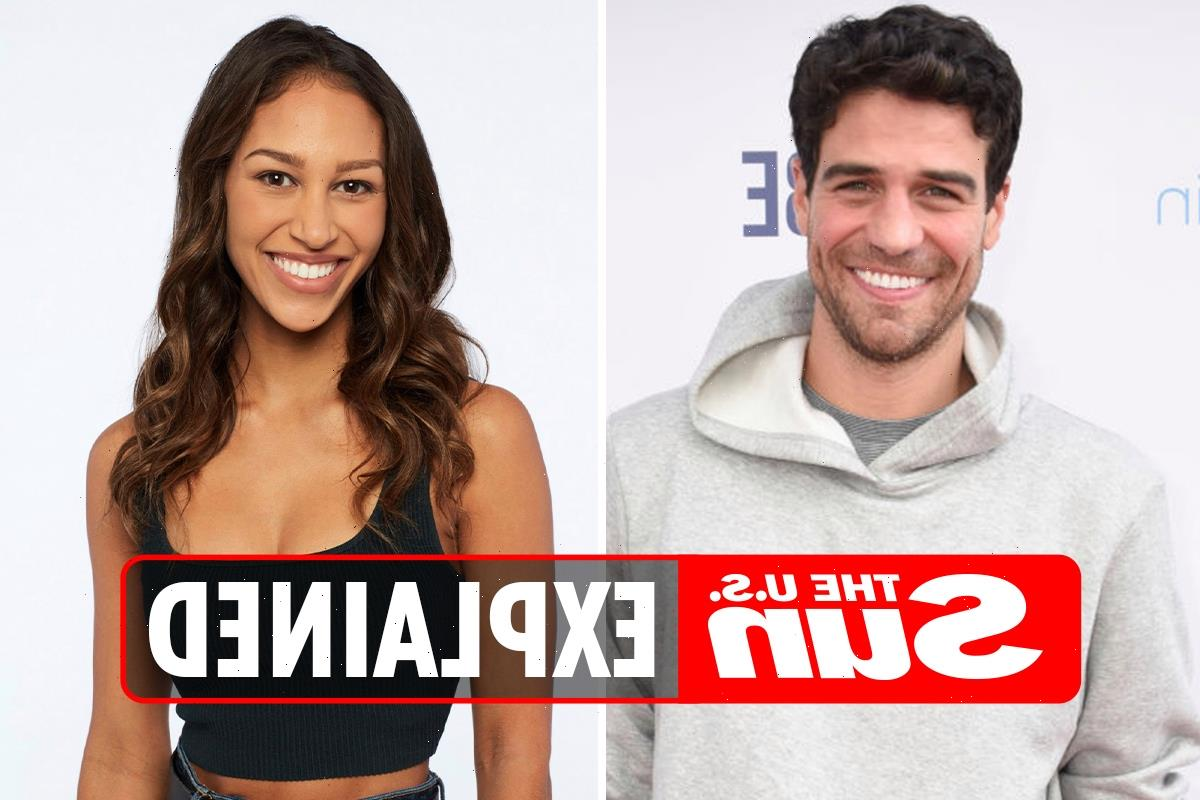 Are Joe Amabile and Serena Pitt from Bachelor in Paradise dating?