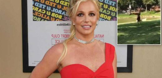 Britney Spears does cartwheels on Instagram after court victory