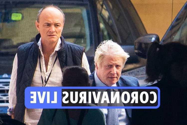 Coronavirus news UK: Dominic Cummings says Boris Johnson 'put his career ahead of lives' as he spills No.10 secrets