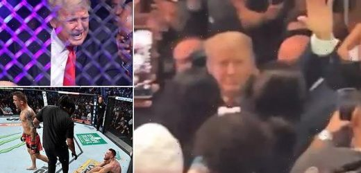 Crowd erupts in cheers as Donald Trump makes appearance at UFC 264