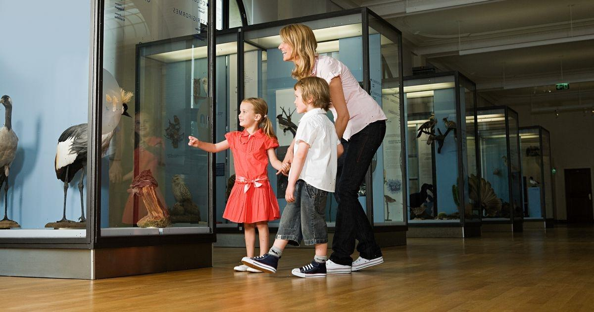 Half of parents have never taken their kids to a museum, study says