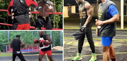 Inside Deontay Wilder's HOME training camp for Tyson Fury trilogy fight which includes outdoor ring and basketball court