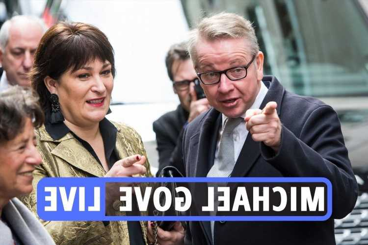 Michael Gove divorce latest – Tory MP & journalist Sarah Vine 'separate' after 'drifting apart' ending 20-year marriage