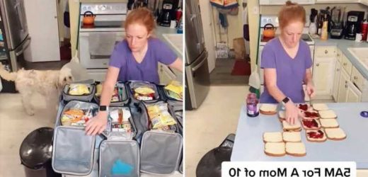 Mum-of-10 who adopted six kids rushes to make packed lunches – but trolls say she should've 'rushed' for contraception