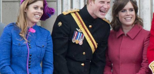 Princesses Beatrice & Eugenie 'sympathise' with Prince Harry over book deal as he was 'rarely heard' in Royal Family