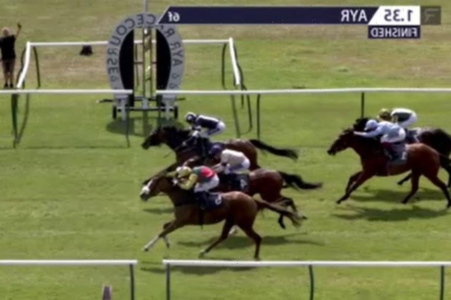 Punters celebrate massive windfall after somehow backing 999-1 in-running winner who stole race in dramatic photo finish