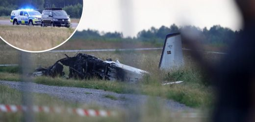 Sweden plane crash – Mystery behind tragedy which killed nine 'may never be solved as fears aircraft had no black box'