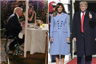 Trump and Melania treated like 'zoo animals' at Mar-a-Lago where 'they eat alone as guests stare and clap,' book claims
