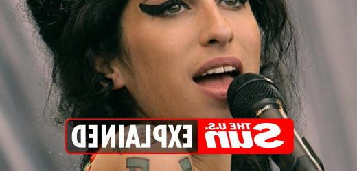Why did Amy Winehouse go to rehab?