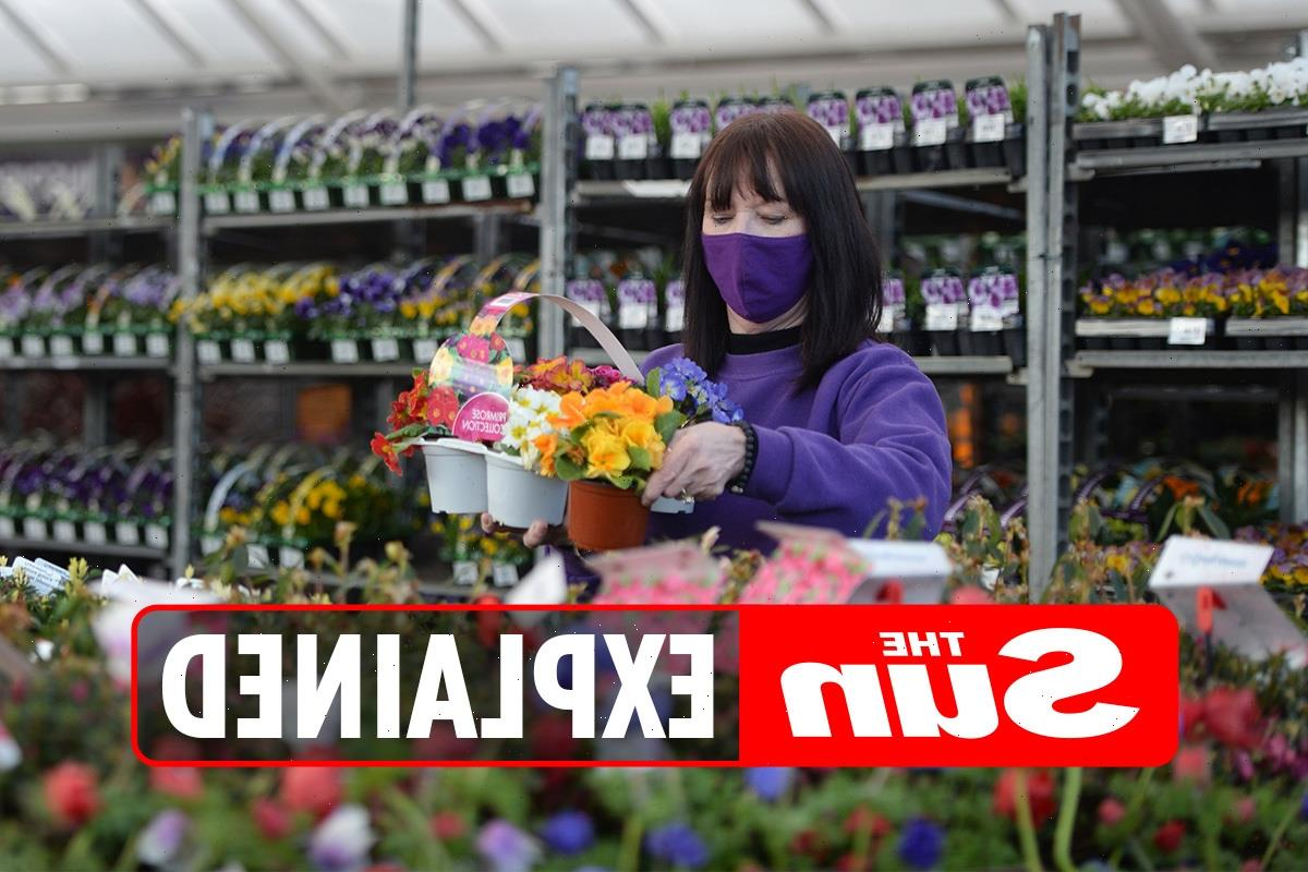 Are gardening centres open on August Bank Holiday Monday?
