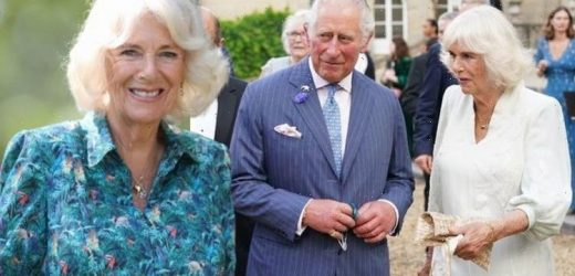 Camilla and Charles body language shows 'nesting' – but Charles still 'star of the show'