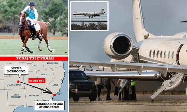 EXCLUSIVE: Prince Harry touches down in private jet after polo match