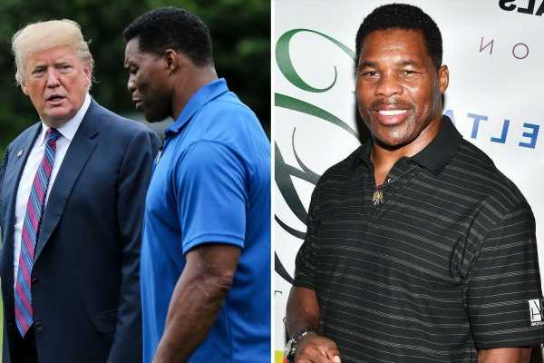 Ex-NFL star Herschel Walker is running for Senate in Georgia after Trump said his politics 'would be unstoppable'