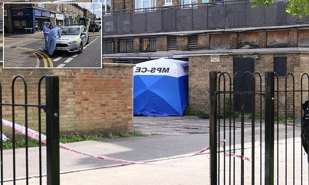 Father-of-three knifed to death 'defending daughter from thugs'