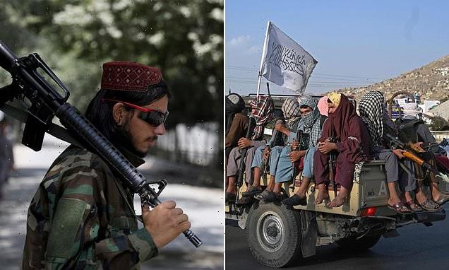 Ministers could make it a CRIME to enter Afghanistan