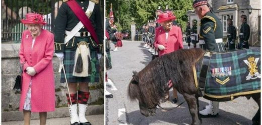 'Our Gracious Queen': The Queen radiates in pink receiving official welcome at Balmoral