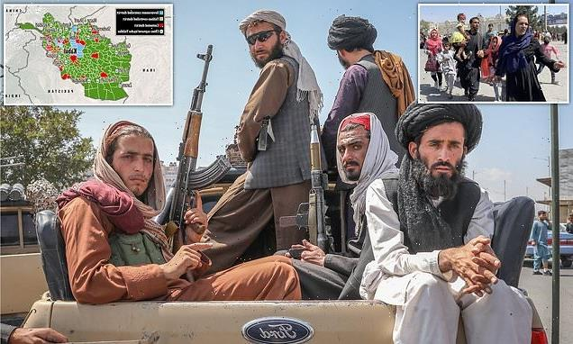 Taliban maraud the streets of Kabul hunting girls as young as 12
