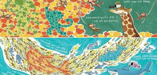 The picture book that tests for colour blindness