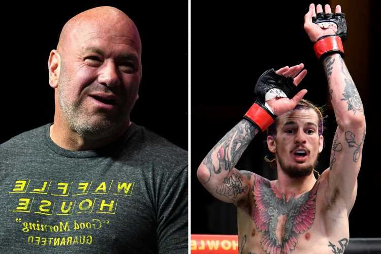 UFC star Sean O'Malley slams Dana White over pay and rages 'Why do they have problem paying someone what they're worth?'