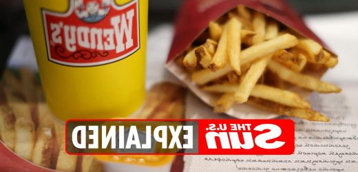 What are the new French fries at Wendy's?