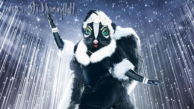 'The Masked Singer' New Season 6 Costume: Meet The Skunk