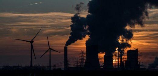 Business urges government to take net zero pledge to UN climate talks