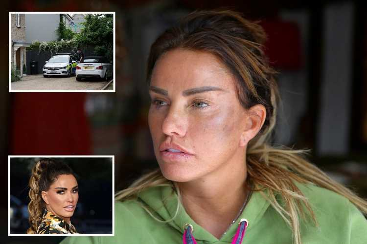 Katie Price 'attack': Man arrested on suspicion of assault after TV star 'punched at home' is re-bailed until next month