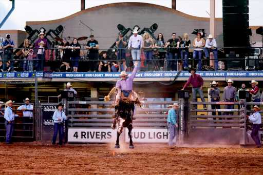 """Things to do in Denver: Colorado State Fair, History Colorado's """"Astrid,"""" and more"""