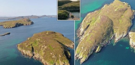 Tiny island in Scotland's 'Summer Isles' goes on sale for £50,000